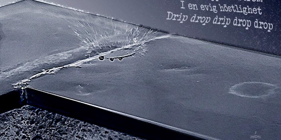 #haiku - Drip Drop