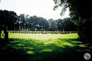 Gemenebest in Oosterbeek212800012