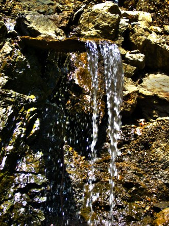 I found this water source at Pining Village after walking for one hour.