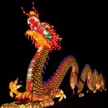 China Light Festival