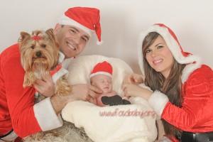 Reportajes Fotográficos de Navidad en Granada (5)