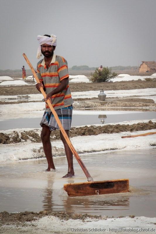 Arbeiter bei der Salz Ernte