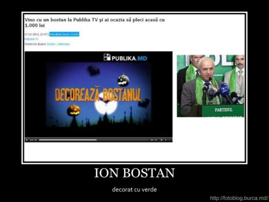 Ion Bostan - decorat cu verde