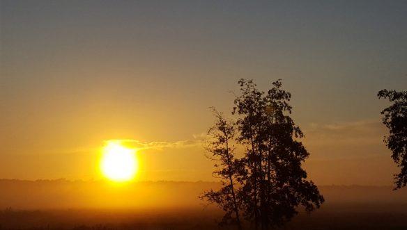 zonsopgang 9