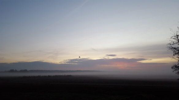 zonsopgang 55