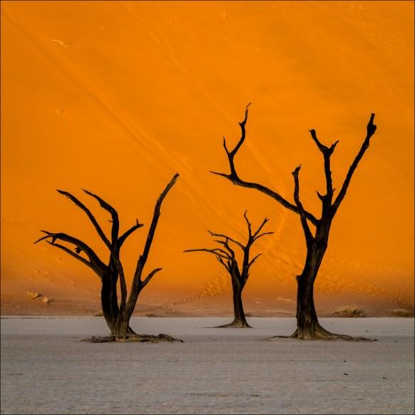 18-namibië landscape-15