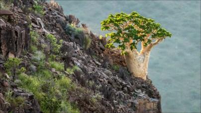 18-namibië landscape-19