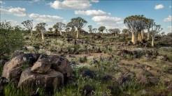 18-namibië landscape-2