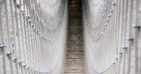Ria Jenné-the bridge