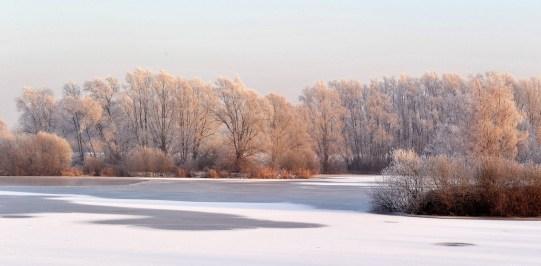 sneeuw en ijs 2009 023