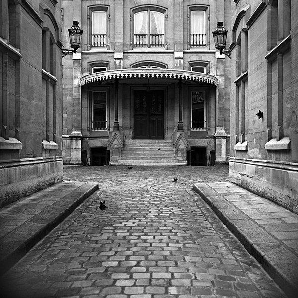 ETOILES NOIRES delmotte_fotodart