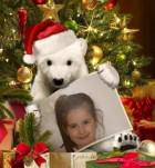 Fotomontajes Navidad y preciosas Postales navideñas.