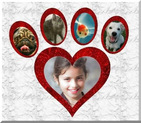 Fotoefectos con Mascotas