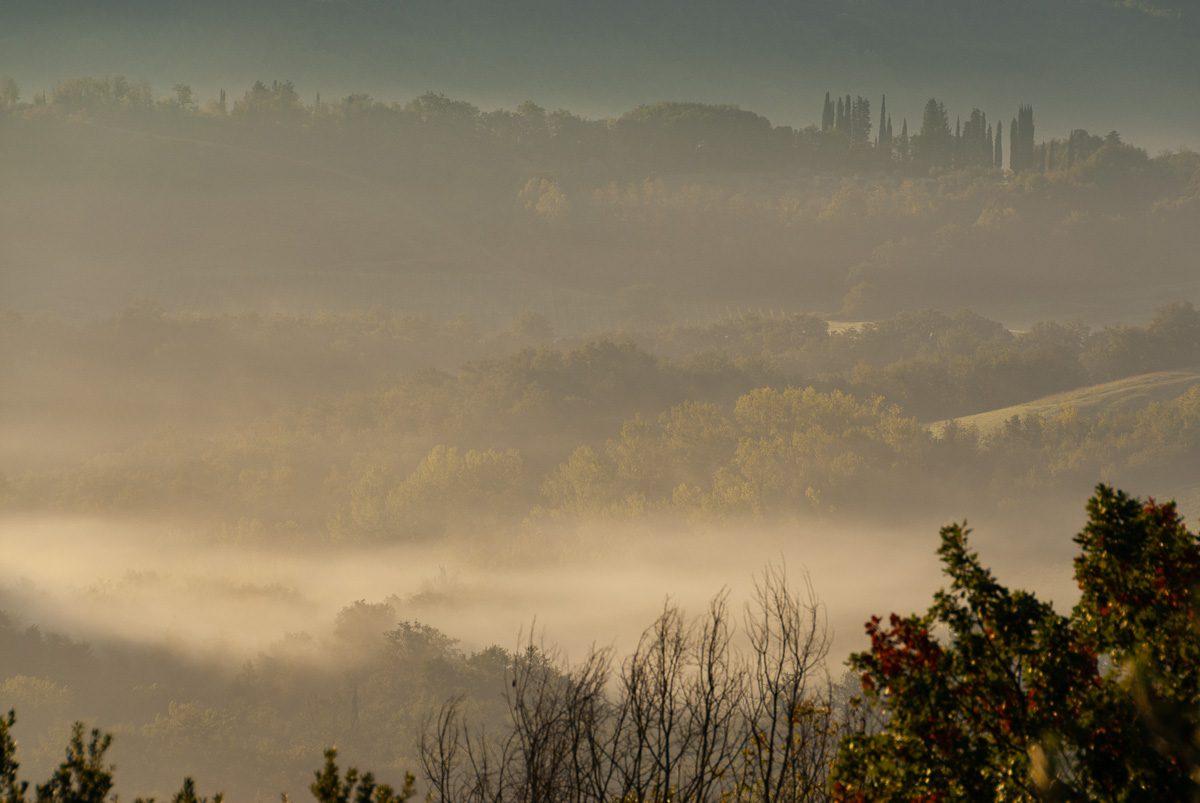 Toskana mit Nebel im Tal und Säulenzypressen im Hintergrund - Wandbild Toskana
