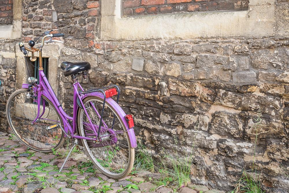 Pinkes Fahrrad © Michael Nölke
