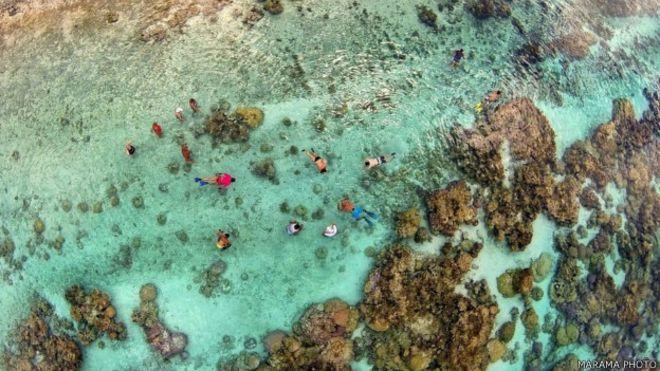 Jardín de Corales en la Laguna de Tahaa, en la Polinesia francesa