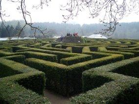 immaculate garden
