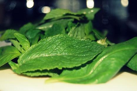 add fresh basil and mint