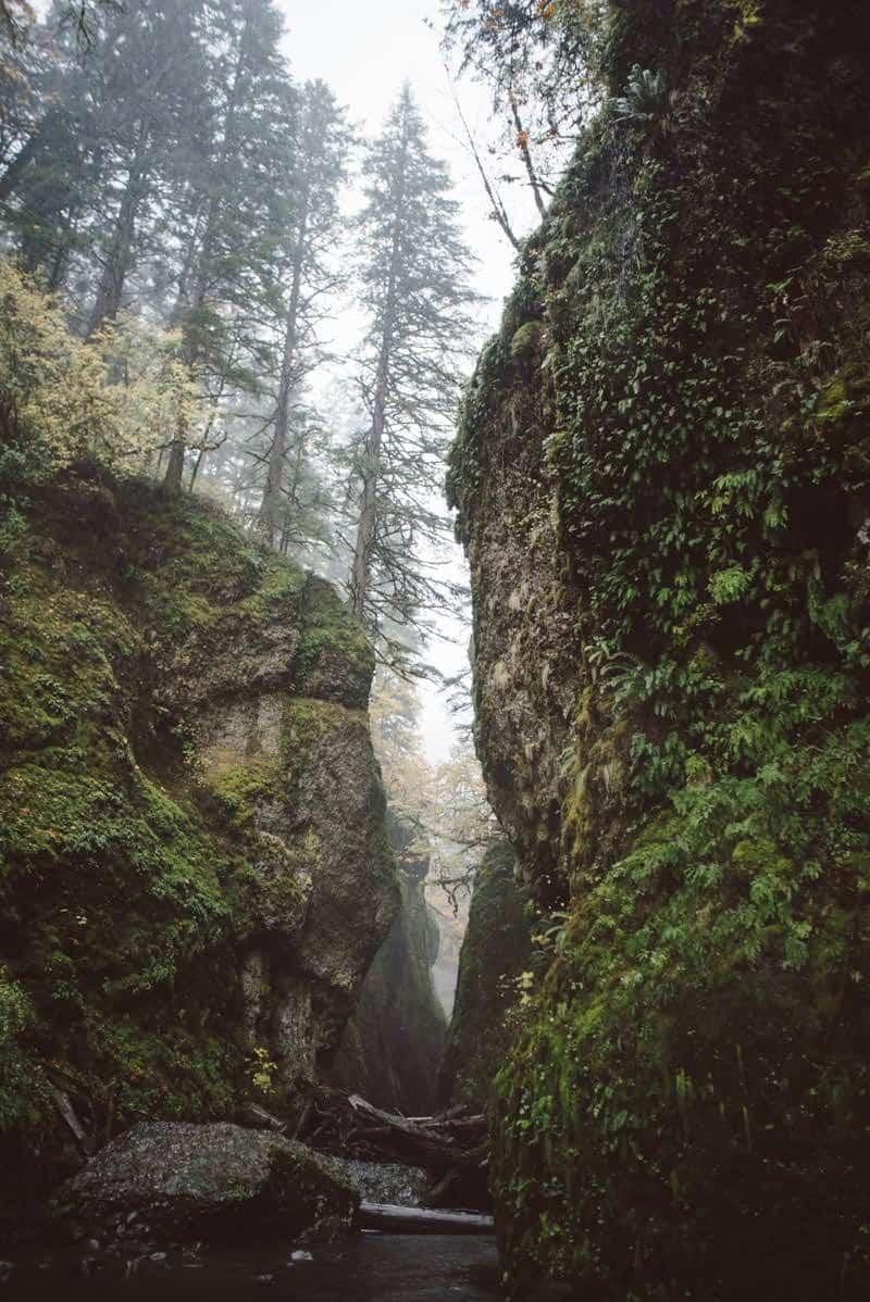oneoma gorge Portland Oregon
