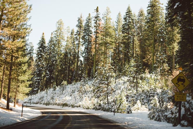 Yosemite (20 of 59)