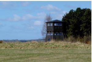 Fugletårn - Turen på Feddet