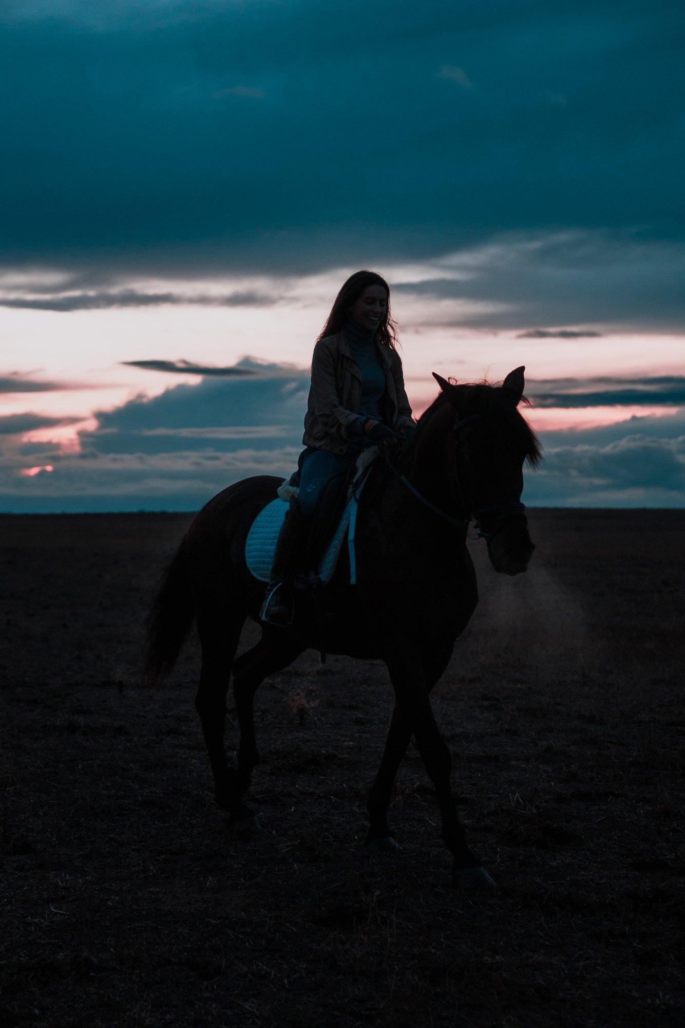 Atardecer caballo relinchando - Linzex