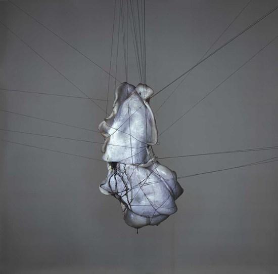 Richard Learoyd fotografo natura morta seppia immagini