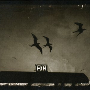 Sarah moon fotografia foto rondini bianco e nero