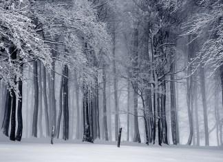 fotografare nella neve paesaggi fotocamera e attrezzatura