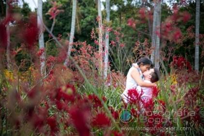 bogota-jardin-botanico-fotos-de-parejas-fotografias-de-novios-fotografias-de-preboda-fotografias-romanticas-lindas