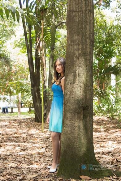 fotografias-de-quince-años-sesion-pre-quince-años-jardin-botanico-vestido-azul-arbol-tronco
