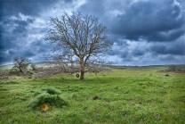 Località San Magno, nel Parco Nazionale dell'Alta Murgia (BA)