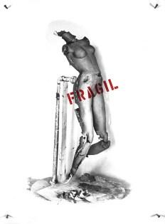 Fragil.72x600