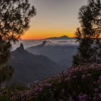 Isla de Gran Canaria   Continente en Miniatura