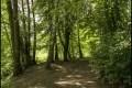 Steinbergpark (Bezirk Reinickendorf)