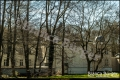 Treptower Park - Archenhold-Sternwarte(Bezirk Treptow-Köpenick)