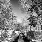 fotografia czarno biała fotograf warszawa cennik zdjęcia miasta Warszawa bnw blackwhitephotography