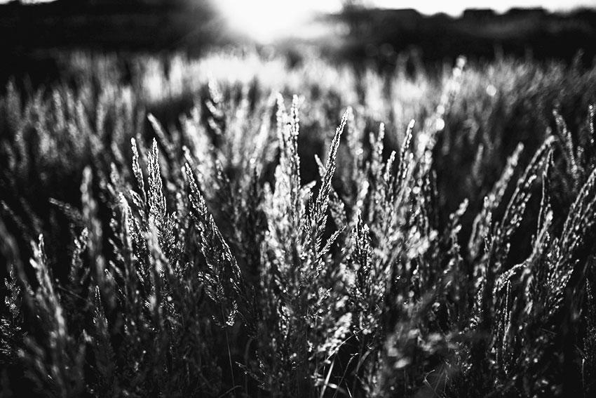 fotografie_warszawa_model_blackwhitephoto