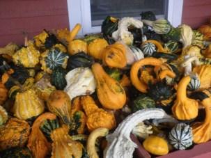 Herbststimmung Neuenglands