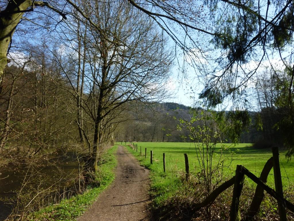 Mühlen- Bäche- Wald und Wiesen im Eifgenbachtal