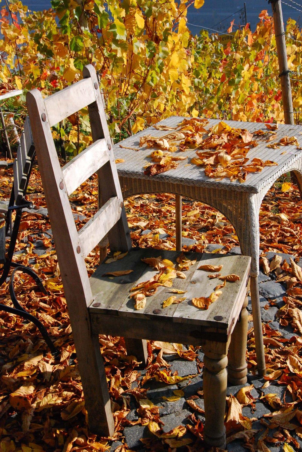 Bunte Blätter auf den Terrassenmöbeln am GÜnderodehaus