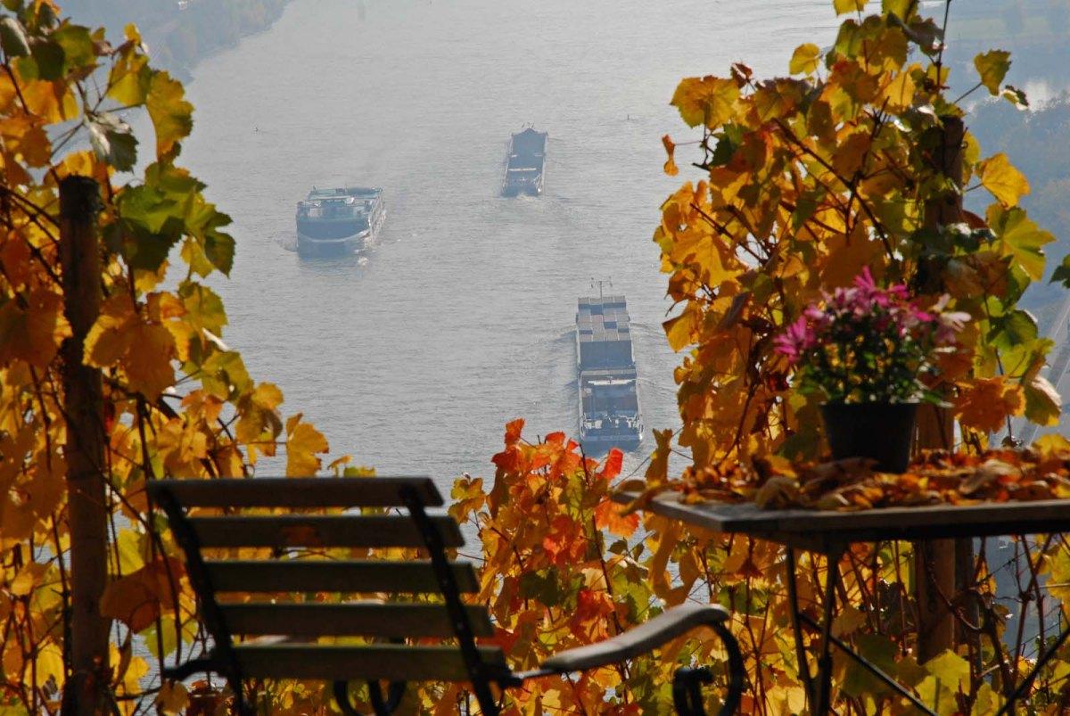 Terrasse am Günderodehaus Blick auf den Rhein