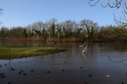 Fluten-überall-im-Dezmeber-