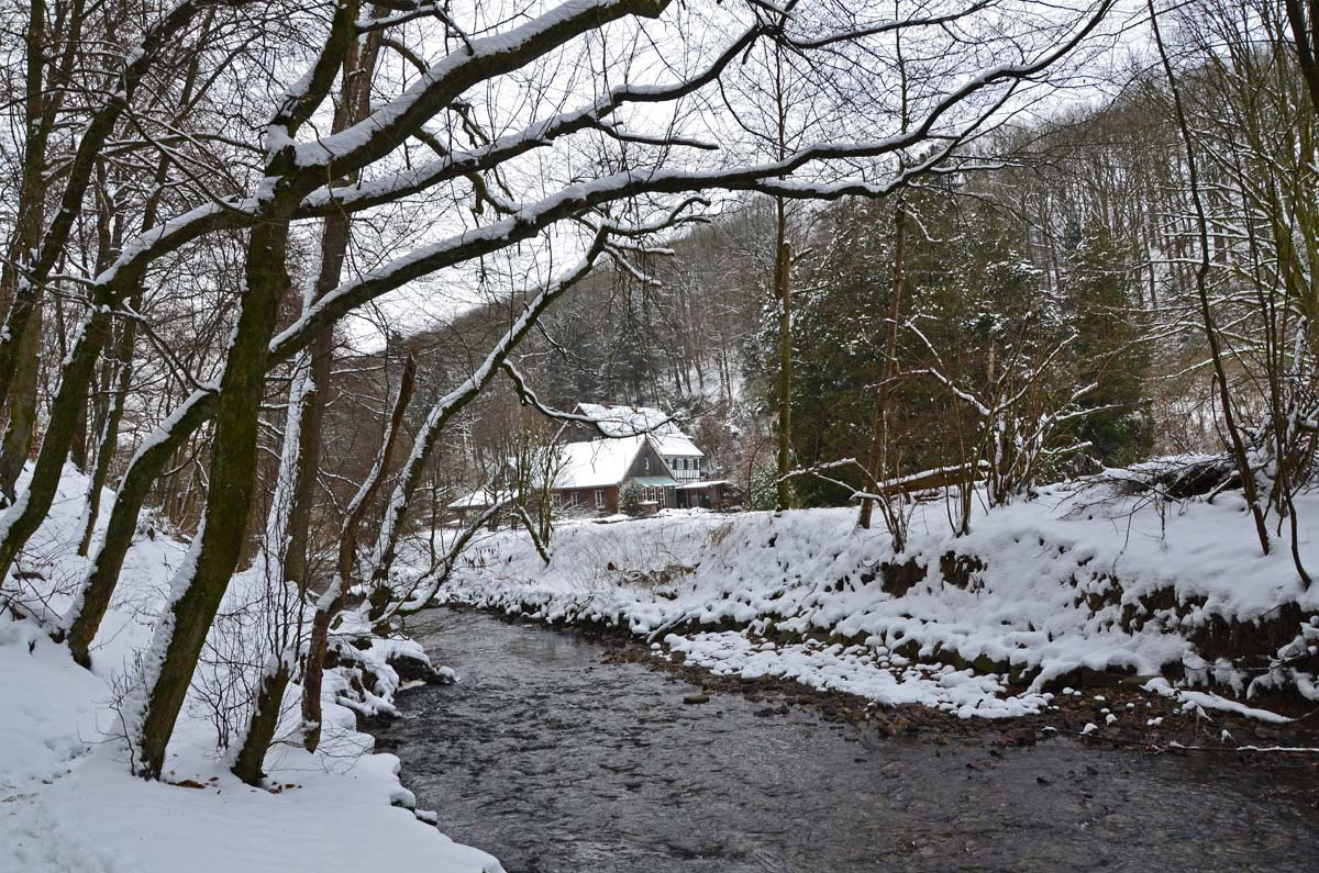 EifgenbachwanderungimSchnee (10) - Kopie