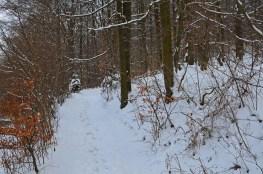EifgenbachwanderungimSchnee (2) - Kopie