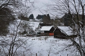 EifgenbachwanderungimSchnee (61) - Kopie