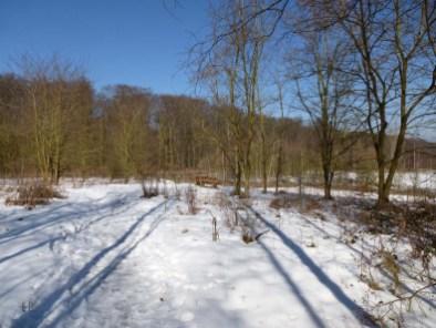 Vulkanlandschaft am Laacher See (52) - Kopie