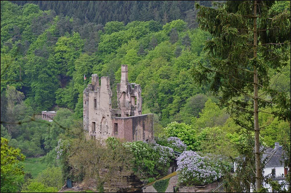 Der erste Blick auf die Burgruine Rammstein.