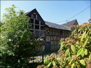 Gilsdorf4