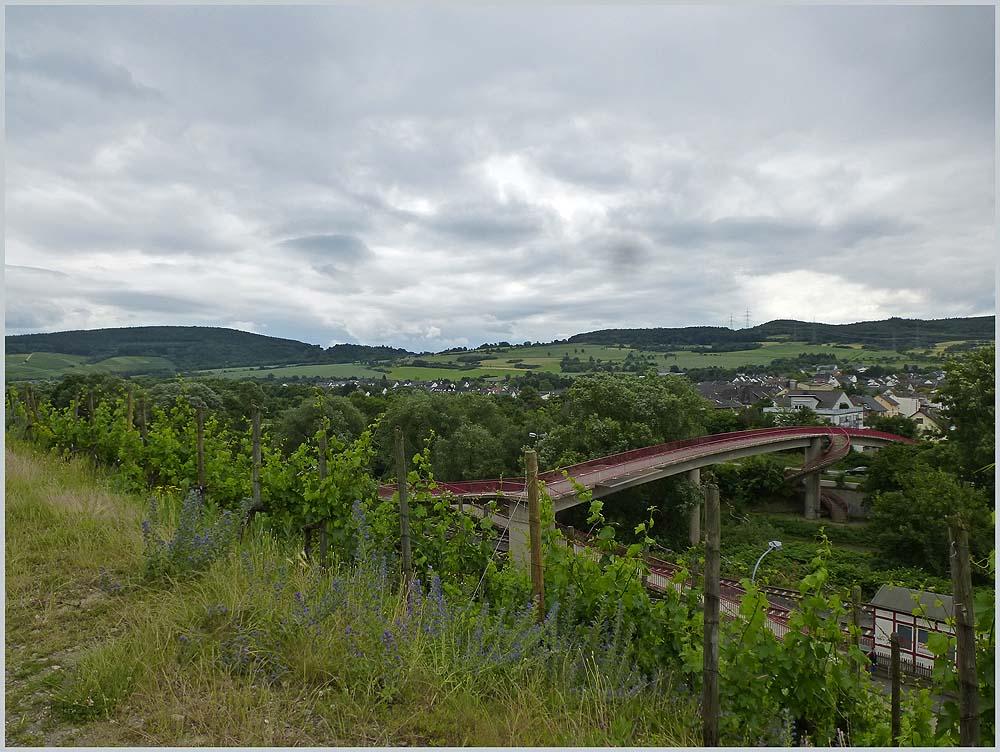 Heimersheim - Orchideenwiesen - Landskrone